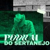 Podium do Sertanejo by Various Artists