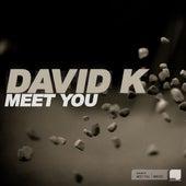 Meet You by David K.