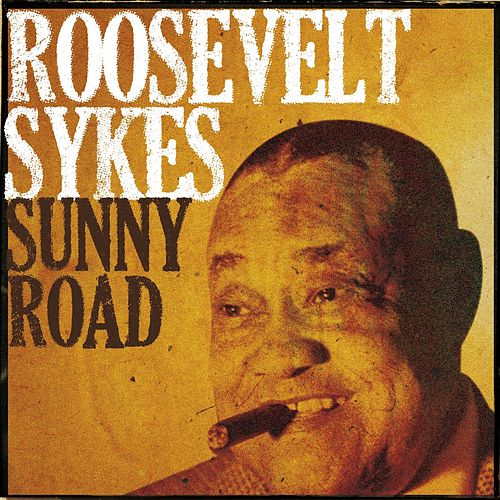Sunny Road by Roosevelt Sykes