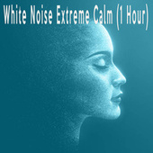 White Noise Extreme Calm (1 Hour) by Color Noise Therapy