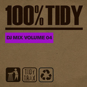 100% Tidy, Vol. 4 by Various Artists