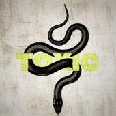 TOXIC by Kyd Kazi