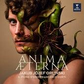 Anima Aeterna - Nucci: Il Davide trionfante: