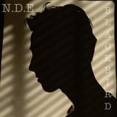 Blackbird by NDE