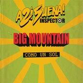 Como un Sol by Inspector
