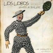 Vamos A Bailer by Los Lobos