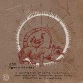 Early Birds von Múm