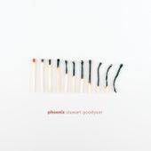 Phoenix von Stewart Goodyear