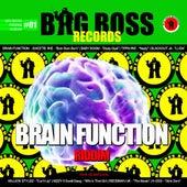 Brain Function Riddim 01 von Various Artists