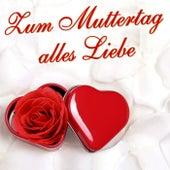 Zum Muttertag alles Liebe de Various Artists