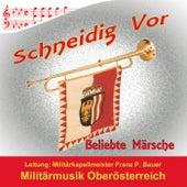 Schneidig Vor von Militärmusik Oberösterreich