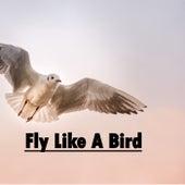 Fly Like a Bird de Heaven is Shining