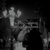 25 Mind Enhancing Blissful Rain Sounds de Zen Meditate