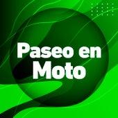Paseo en Moto de Various Artists