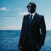 Freedom (Int'l Version 2) van Akon