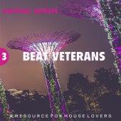 Beat Veterans, Vol. 3 by Various Artists