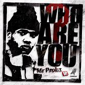 Who Are You? - Single by Mr. Probz