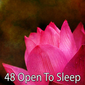 48 Open to Sleep by Best Relaxing SPA Music