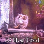 53 Hog Tired by Best Relaxing SPA Music