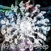 49 Heroes of Sleep de Lullaby Land