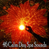 46 Calm Day Spa Sounds by Zen Meditate