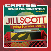 Crates: Remix Fundamentals, Vol. 1 (Spring Summer Feeling) de Jill Scott