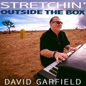 Stretchin' Outside the Box by David Garfield