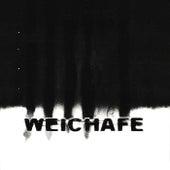 Tierra Oscura del Sol (Edición 20 años) de Weichafe