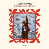 Can't Hide It de Curtis Harding
