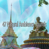 47 Natural Ambience Sounds by Zen Meditate