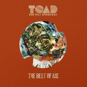 The Best of Me (feat. Michael McDonald) by Toad the Wet Sprocket