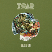 Hold On by Toad the Wet Sprocket