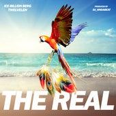 The Real (feat. Twelve'len) von Ice Billion Berg