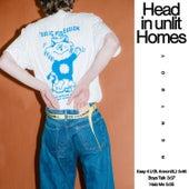 Head In Unlit Homes de Rentboy
