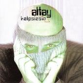 Kalpsizsin von Altay