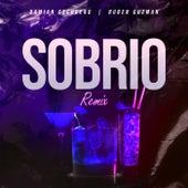 Sobrio (Remix) de Damian Escudero DJ
