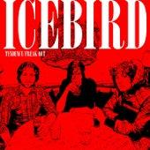 Tendency / Freak Out by Icebird