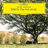 J.C. Bach: Sonata No. 5 in A Major, Op. 17, No. 5: I. Allegro by Daniil Trifonov