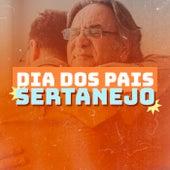 Dia dos Pais Sertanejo de Various Artists
