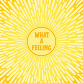 What A Feeling von Various Artists