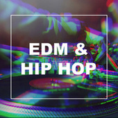 EDM & Hip Hop fra Various Artists