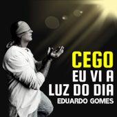 Cego vi a luz do dia de Eduardo Gomes