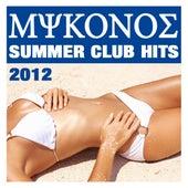 Mykonos Summer Club Hits 2012 von CDM Project
