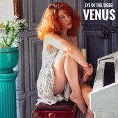 Eye of the Tiger de Venus