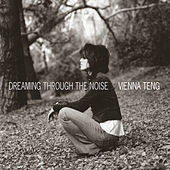 Dreaming Through The Noise by Vienna Teng