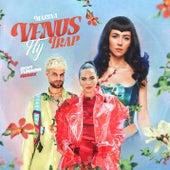 Venus Fly Trap (Sofi Tukker Remix) by MARINA