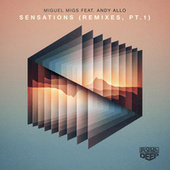 Sensations (feat. Andy Allo) (Remixes, Pt. 1) by Miguel Migs