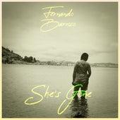 She's Gone (Cover) von Fernando Barroso