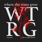 Where The Roses Grow (VIZE & NOØN Remix) von Tiscore