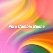 Pura Cumbia Buena fra Various Artists